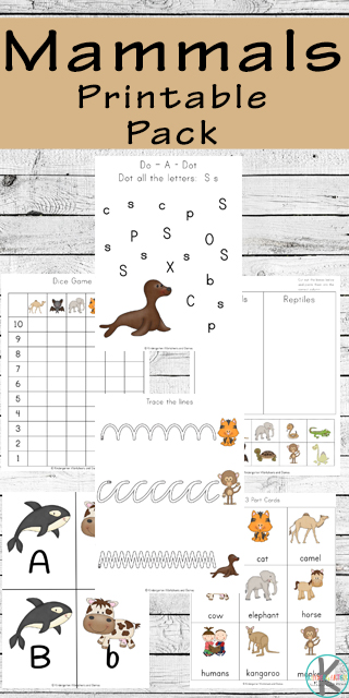 Children will  have fun learning about eleven different mammals as they practice math and literacy skills with these free printable mammals worksheet. In these themed worksheets they will learn about mammals for kids including camels that live in hot areas, bats that live in caves and fly in the air, whales that live in the ocean and cows and horses that live on the land. Use these mammals worksheet kindergarten, preschool, pre-k, and first grade students. SImply download pdf file with free mammal worksheets and you are ready to have fun learning about mammals for kids.