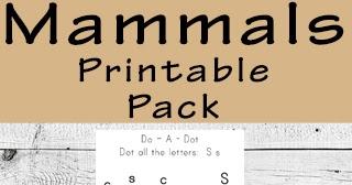 Kindergarten Worksheets And Games Free Mammals Worksheets