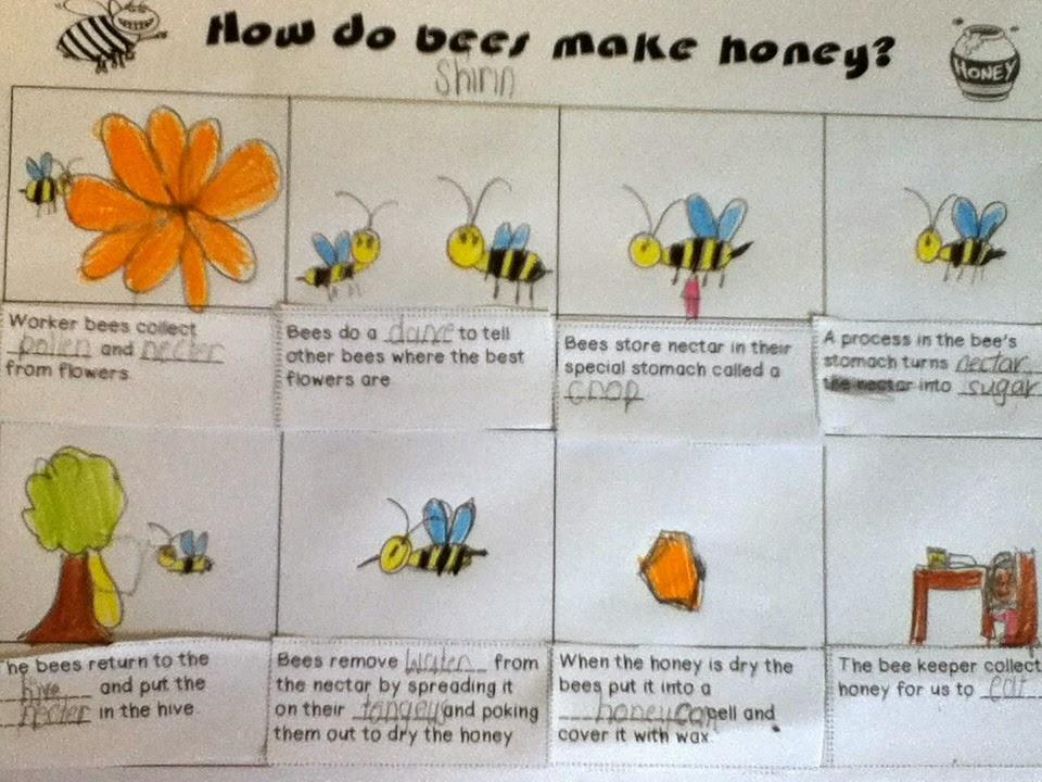 How bees make honey bevalplan maken