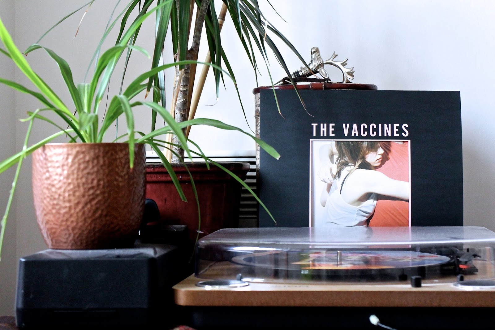 The Vaccines vinyl, record player and plant - hipster aesthetic