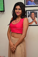 Akshita super cute Pink Choli at south indian thalis and filmy breakfast in Filmy Junction inaguration by Gopichand ~  Exclusive 025.JPG