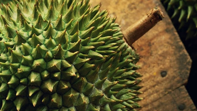 "Amazing Benefits of Durian ""King of Fruit"" for Healthy and Body 1"