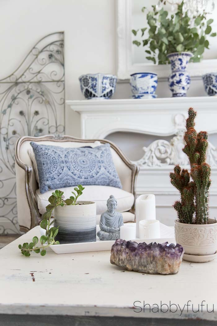styling a boho living room succulents cactus