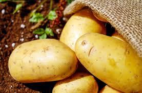 ريجيم البطاطس المسلوقة - البطاطس للرجيم
