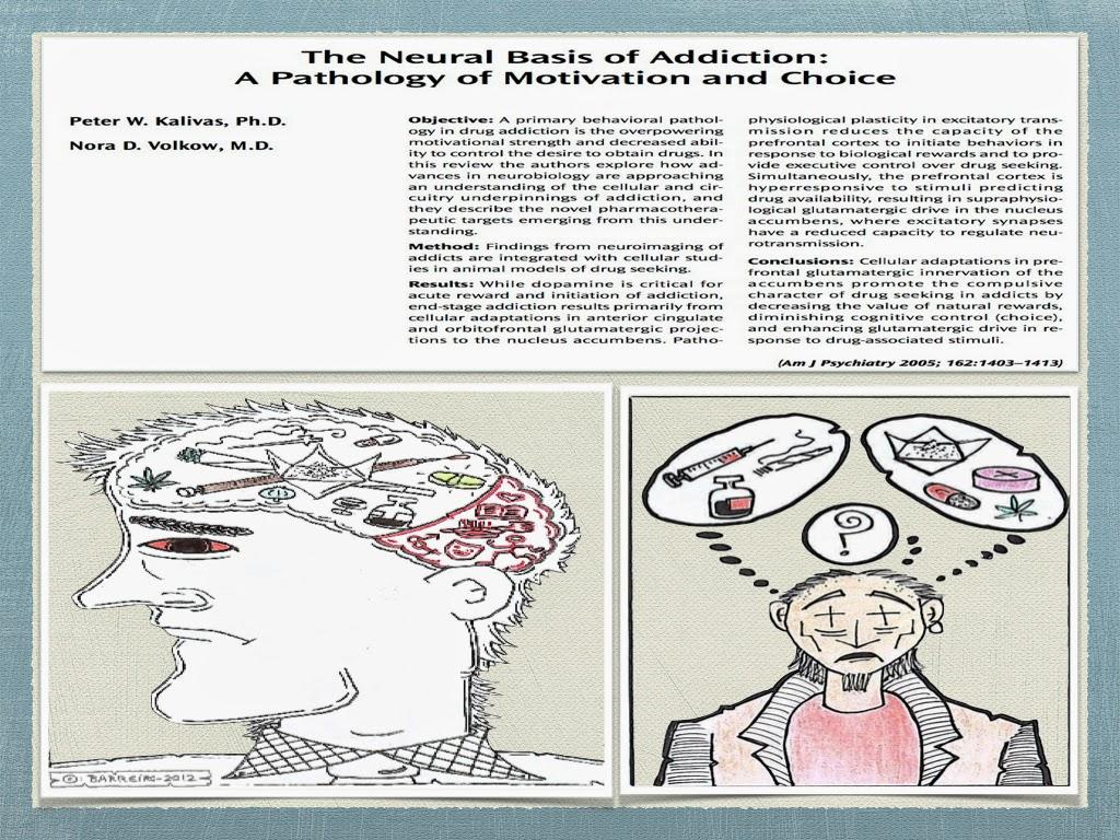 the neural basis of empathy pdf