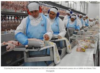Exportações de carnes de aves já superam US$ 1 bi