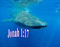 Jonah and the Whale - Jonah 1:17, Jonah and the whale short bible story for kids