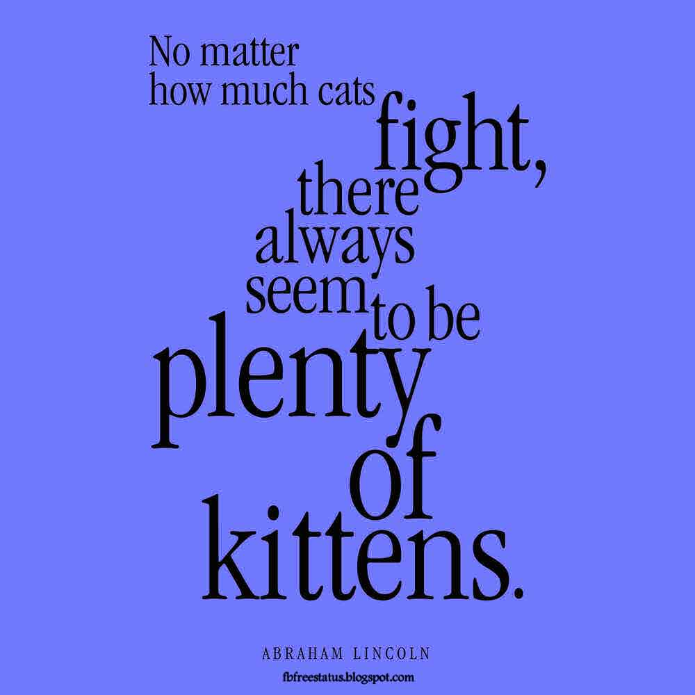 No matter how much cats fight, there always seem to be plenty of kittens. Abraham Lincoln.Quote