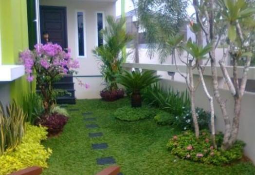 Taman dengan tanaman