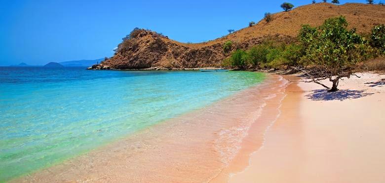 Welcome to Indonesia Blog: Pink Beach - Komodo Island