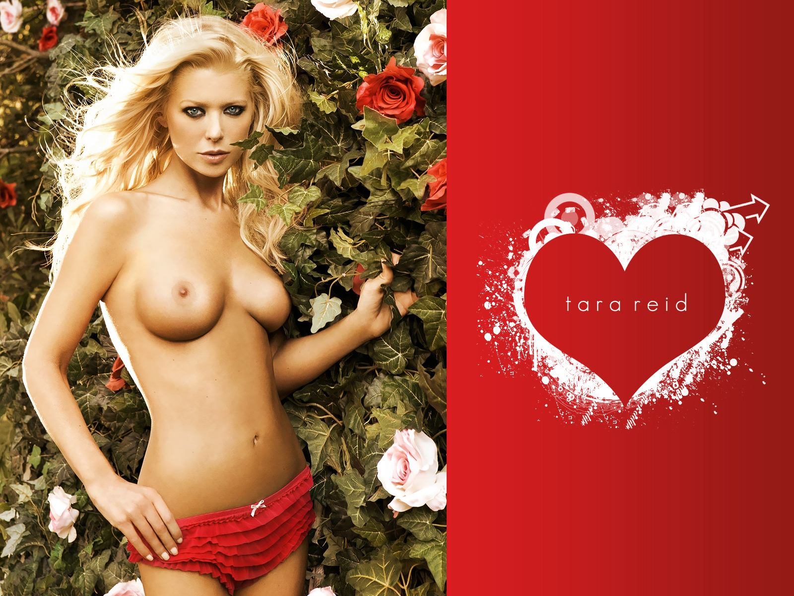 Big breasted tara reid hot romantic sex porn pics sex images