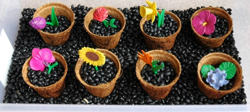 Flower theme sensory box with black beans, pots, and play flowers