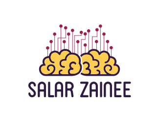 Salar zainee channel
