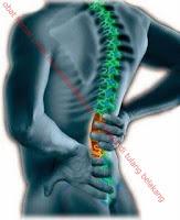 obat herbal untuk menyembuhkan syaraf kejepit di tulang belakang