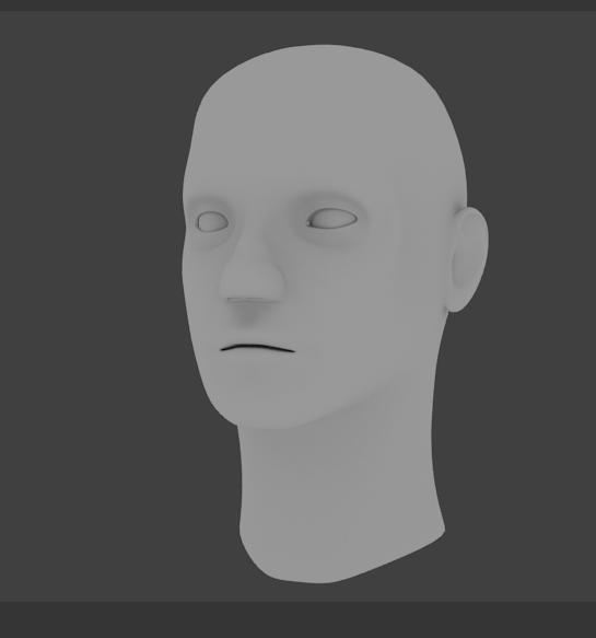 samples - human head