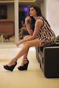 Adah Sharma New photo session-thumbnail-5