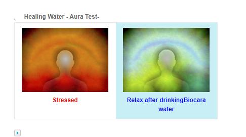 BioCera Alkaline Water: BIOCERA ANTIOXIDANT ALKALINE JUG FILTER