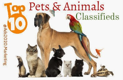 Pets-animals-Top-10-best-classifieds-websites-post-free-ads-buy-sell-online