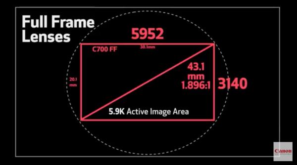 Разрешение и габариты сенсора в камере Canon C700 FF