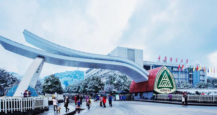 Beasiswa Chongqing University