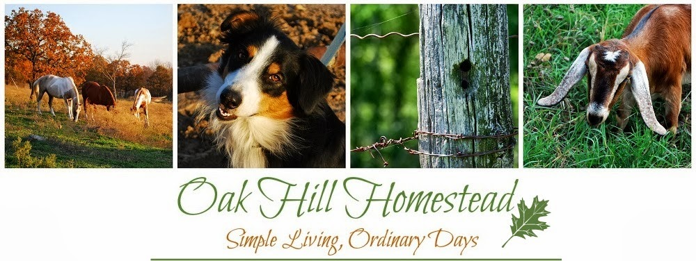 Oak Hill Homestead
