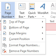 Dialog submenu Page Number