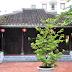 Đình Làng Hải Châu - địa điểm du lịch Đà Nẵng nên đến