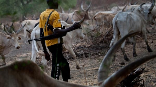 Our Governors Have Embarrassed Us With Silence Over Fulani Herdsmen Rampage - Igbo Group