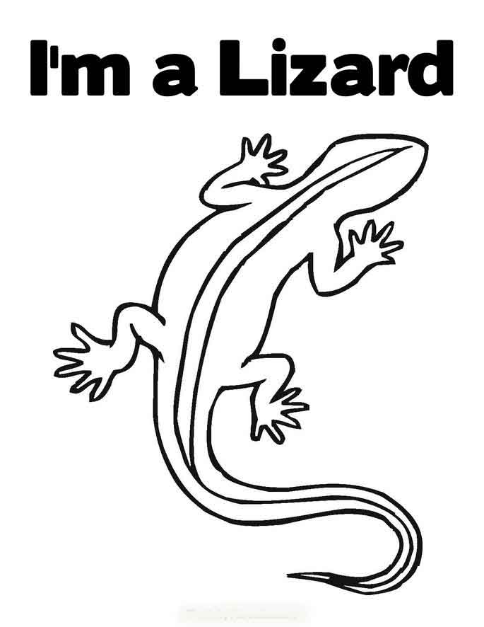 reptiles coloring pages | Gecko Reptile Coloring Pages To Kids