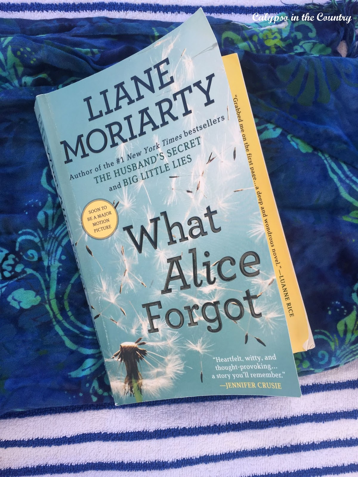 What Alice Forgot - A great book to read on the beach!