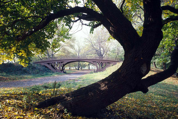 The Best Central Park In United State of America