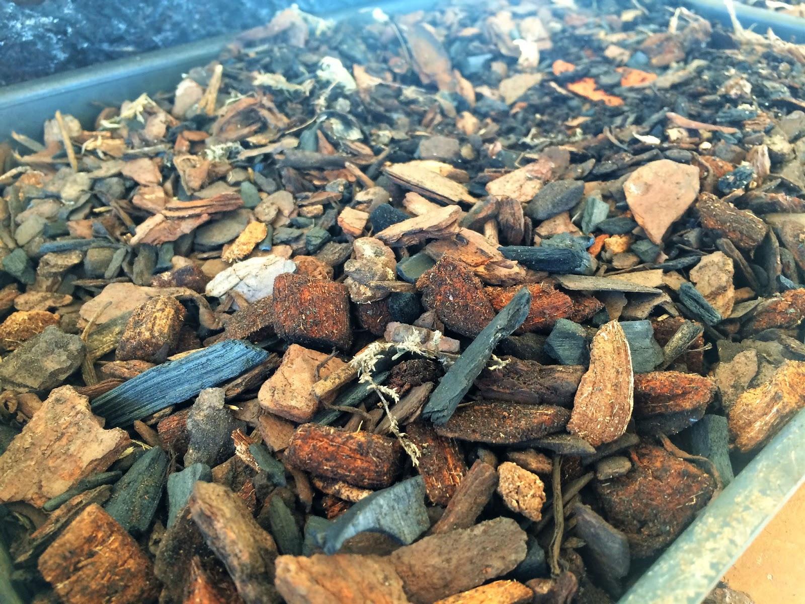 casca de pinus com carvão