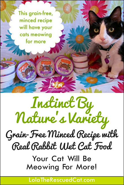 Instinct by Nature's Variety|Chewy Influencer