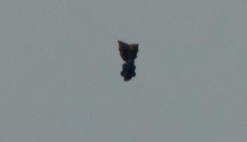 UFO News - UFO Seen During Sunset Over Devon, England plus MORE Bomb%252C%2Bontario%252C%2Bcanada%252C%2Bstatue%252C%2Bfigure%252C%2Bold%2Bman%252C%2BMars%2B%252C%2Bsphinx%252C%2BMoon%252C%2Bsun%252C%2BAztec%252C%2BMayan%252C%2BWarrier%252C%2Bfight%252C%2Btime%252C%2Btravel%252C%2Btraveler%252C%2Brocket%252C%2BUFO%252C%2BUFOs%252C%2Bsighting%252C%2Bsightings%252C%2Balien%252C%2Baliens%252C%2Bpod%252C%2Bspace%252C%2Btech%252C%2BDARPA%252Cgod%252C%2B211%2Bcopy112