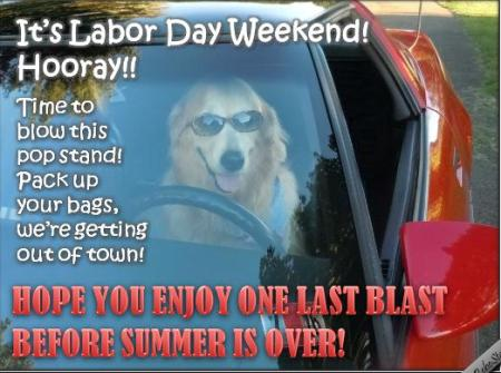 Funny Meme Labor Day : May st is may day international workers labor day u top memes