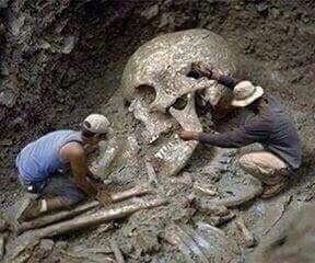 Rangka Manusia yang luar  biasa besar ditemukan di Saudi Arabia