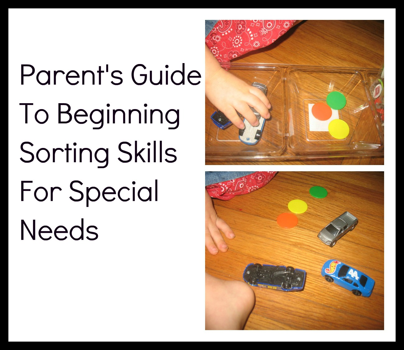 We Can Do All Things Parent S Guide To Beginning Sorting