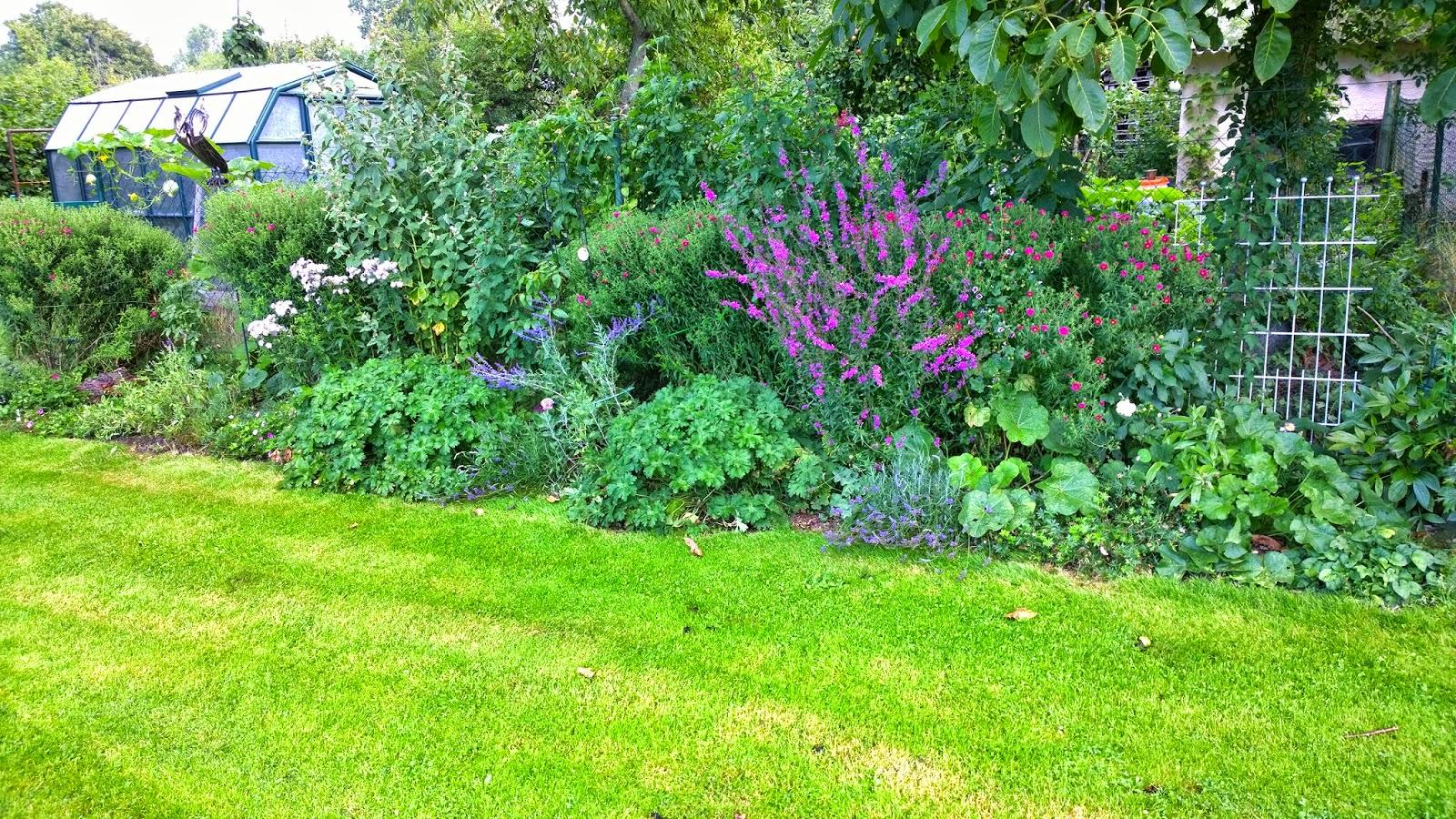 Achimsgarten Der Selbstversorger Und Garten Blog Page 1 Chan
