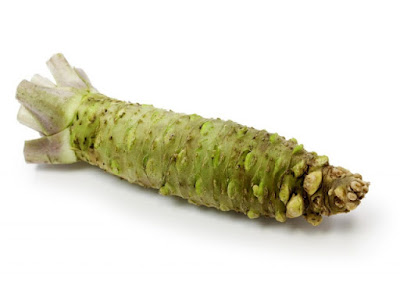 The root of the wasabi plant is branched and root is the bearer of a strong and pungent taste of wasabi spice. Root is pale green in color, with spicy taste that simply burns the mouth.