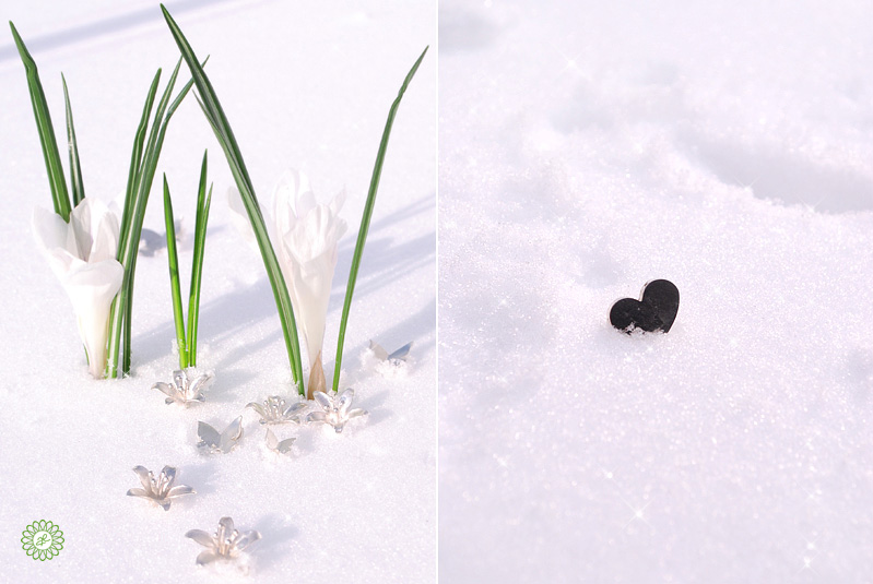 Lovely winter greetings with a little touch of spring ...