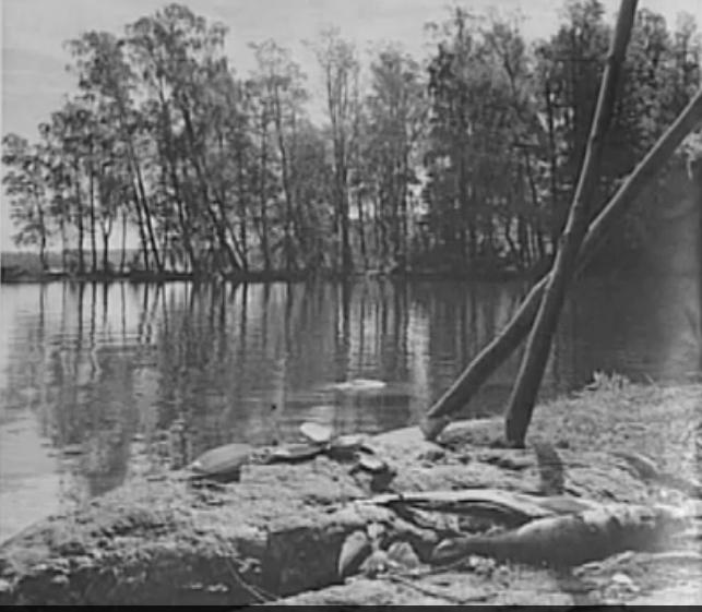 Bodomjärvi