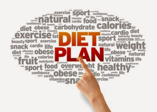 Skinny Fiber Diet Plan. Can I do Atkins, Weight Watchers or other diet plan while taking Skinny Fiber?