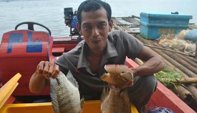 Setelah Tinggalkan Riba, Hasil Tangkapan Nelayan Ini Jadi Berlimpah