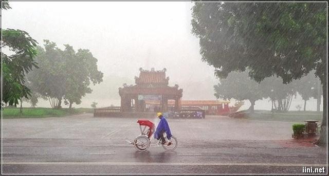 xích lô cô đơn trong cơn mưa Xứ Huế