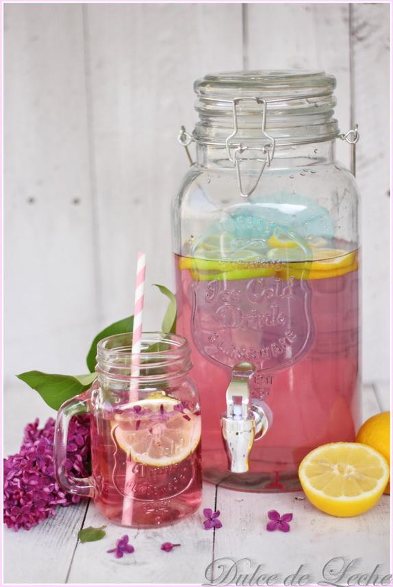 Orgovánová limonáda + darovačka