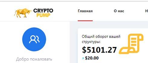 Активность инвесторов в CryptoPumps