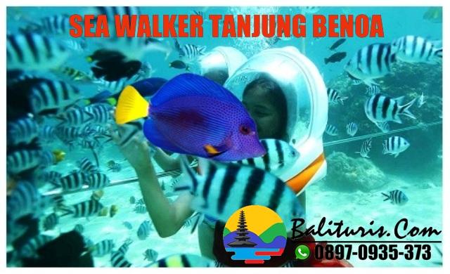 Sea Walker Tanjung Benoa