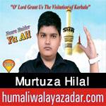 http://www.humaliwalayazadar.com/2016/10/murtuza-hilal-nohay-2017.html