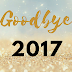 My Year in a Nutshell: Goodbye 2017