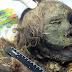 Incrível: Corpo de princesa encontrado 900 anos depois.
